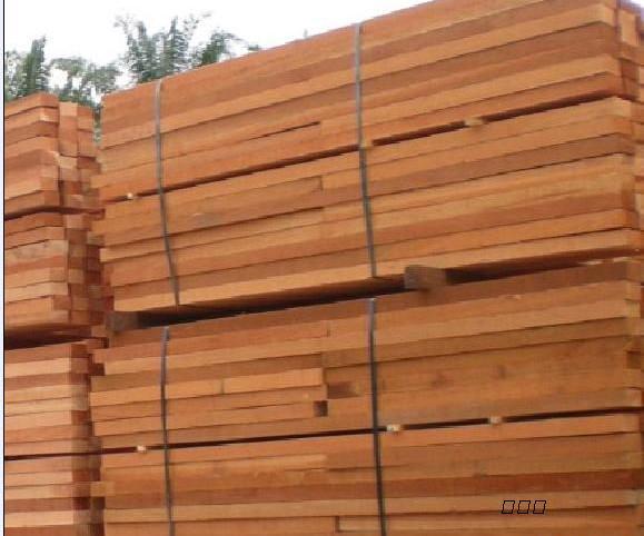 树干高而直,木材结构粗,纹理直或斜面交错,易于干燥和加工,且着钉